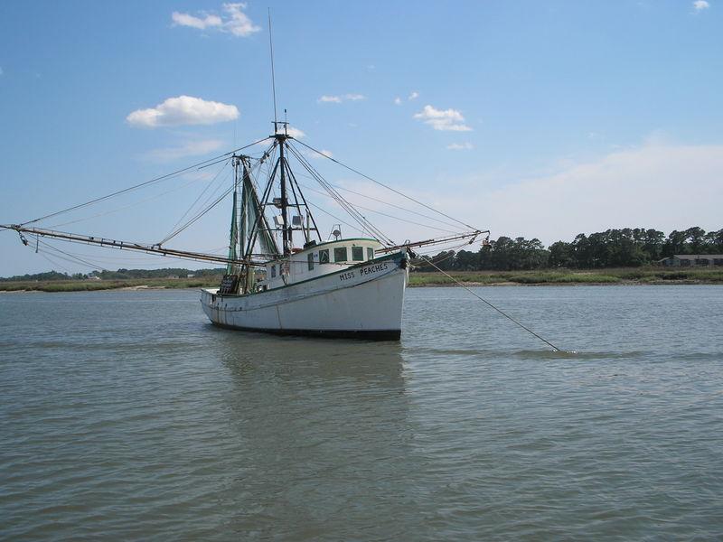 800px-Fishing_Boat.jpg