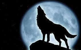 bigbadwolf.png